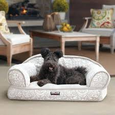 costco pet beds costco dog beds price x tan cream floral print sofa pet bed