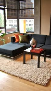 feng shui livingroom chic furniture of feng shui living room decoration with black sofa