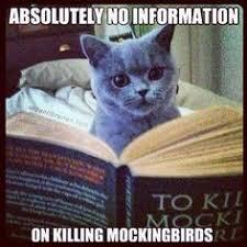 To Kill A Mockingbird Meme - to kill a mockingbird humor teacher stuff pinterest teacher