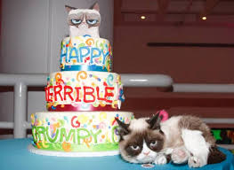grumpy cat celebrates second birthday with party in new york