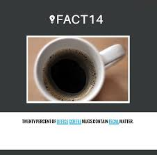 twenty percent of office coffee mugs contain fecal matter the