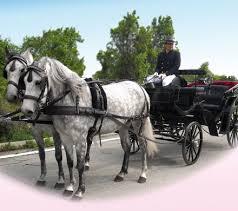 carrozze in vendita organizzazione matrimonio e manifestazioni in carrozza