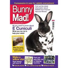 bunny mad magazine magazines hay experts
