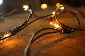 Outdoor Net Lights Net Lights Brown Wire 150 Bulbs 4x6 Ft In Clear