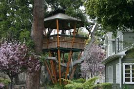 architecture inspiring unique tree house design girlsonit com