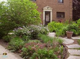 elmhurst project native plants wildlife habitat rain garden in