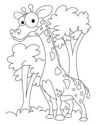 giraffe coloring pages bestofcoloring com