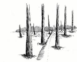 learn to draw simple landscapes in pen and ink my pen and ink