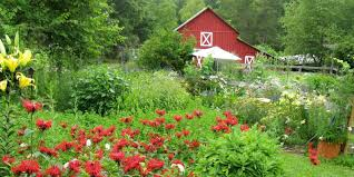 you u0027re one essay away from owning this north carolina flower farm