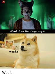 What Is The Doge Meme - what does the doge say woofe woofe doge meme on me me