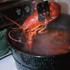 Lobster Barn Abington Ma Always Tasty Surprisingly Versatile Lobster Capecodtravel Com