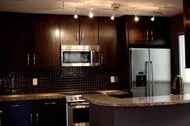 Modern Condo Kitchen Design Condo Kitchen Designs Captainwalt