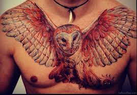 chest tattoos collections