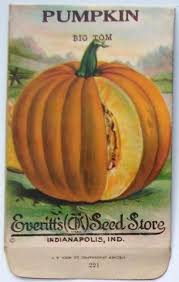 seed packets 996 best antique seed packets images on seed catalogs