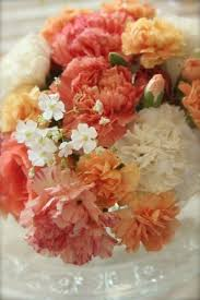 Wedding Flowers January 131 Best Trendy Design Ideas With Carnations Images On Pinterest