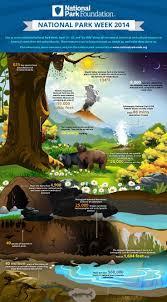 82 best words u0026 infographics images on pinterest infographics