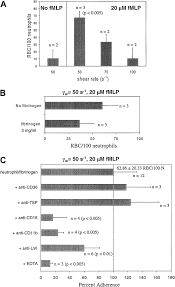 adhesion of normal erythrocytes at depressed venous shear rates to