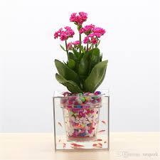 Best Flowers For Office Desk Best Creative Clear Plant Pot Flower Pot Decorative Self
