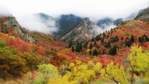 Why Fall Is The Best Season 12 Reasons Why Fall Is The Best Season In Utah