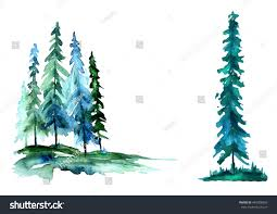 watercolor trees forest pine blue sprucelandscape stock