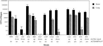 identification of virulence mutants of the fungal pathogen