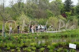 family garden brooklyn brooklyn botanical garden magda pla