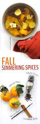 Simmer Pot Recipes Fall Simmering Spices That Make Your House Smell Amazing