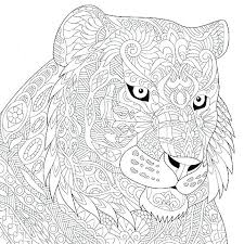 coloring page tigers tiger coloring pages coloring book tiger pages free at tiger info