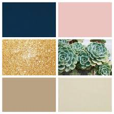 my color scheme navy blush gold and with succulent green