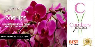 florist atlanta carithers flowers voted best florist atlanta ga same day flower