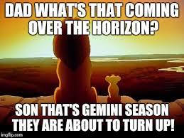 Gemini Meme - lion king meme imgflip