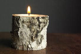 diy birch tree candle holders