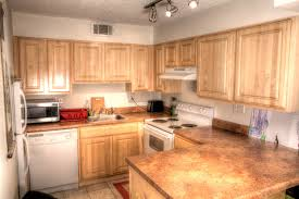 Kitchen With Track Lighting by Amazing St Louis Apartments That Will Knock Your Socks Off