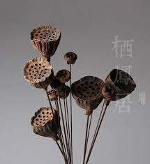 Dried Flower Arrangements Lotus Dried Flowers Promotion Shop For Promotional Lotus Dried
