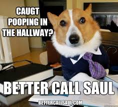 Better Call Saul Meme - caugt pooping in the hallway better call saul bettercallsaul com