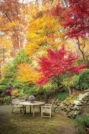 best 25 autumn garden ideas on pinterest fall pictures with