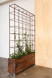 room devider 44 best plant partitions and living wall room dividers images on