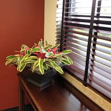 home office indoor plants pothos office modern new 2017 design