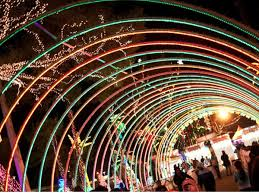 enchanted forest christmas lights with no snow to frollic in check out these christmas lights