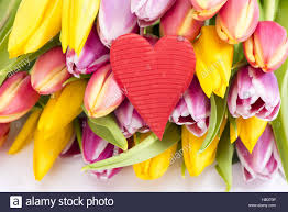flowers wit heart as symbol for love stock photo royalty free