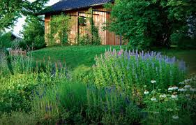 Backyard Landscaping On A Budget Inexpensive Landscaping Ideas To Beautify Your Yard Freshome Com