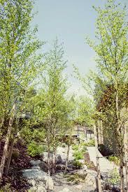 regenesis landscape design construction in ashland oregon