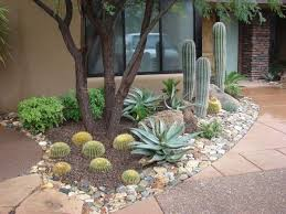 Backyard Decorating Ideas On A Budget Best 25 Arizona Backyard Ideas Ideas On Pinterest Fire Pit And
