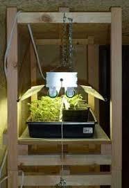 shop light for growing plants diy garden adventures terra nirvana blog guide and creative outlet