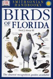 birds of florida birds pinterest bird