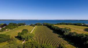 Long Island On Map Long Island Wine Country