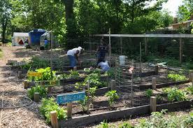 What Is Urban Gardening Urban Learning Gardens U2014 Inter Faith Food Shuttle