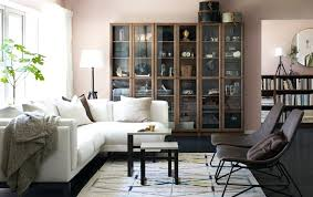 Cabinet Living Room Furniture Living Room Display Furniture Large Size Of Living Room Display