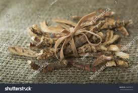Sweet Flag Herb Calamus Root Sweet Flag Flagroot Acorus Stock Photo 336628715