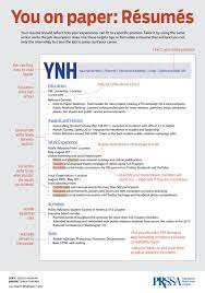 Best Things To Put On A Resume by Best Things To Put On A Resume Free Resume Example And Writing